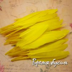 Перо гуся, длина 10-13 см, цвет желтый (1 шт.)