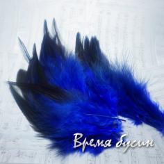 Перо петуха, цвет сине-черный, длина 10-15 см (1 шт.)