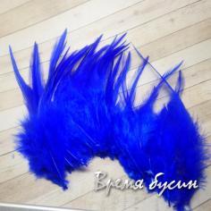 Перо петуха, цвет синий, длина 10-15 см (1 шт.)