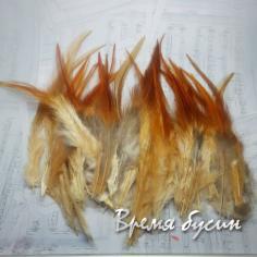 Перо петуха, цвет коричнево-кремовый, длина 10-15 см (1 шт.)