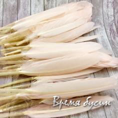 Перо гуся, длина 10-13 см, цвет кремовый (1 шт.)