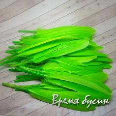 Перо гуся, длина 10-13 см, цвет салатовый (1 шт.)