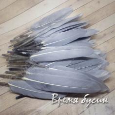 Перо гуся, длина 10-13 см, цвет серый (1 шт.)