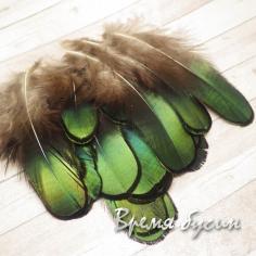Перо павлина, натуральное, с зеленым переливом, длина 5-9 см (1 шт.)