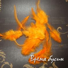Перо петуха, цвет оранжевый, длина 5-15 см (1 шт.)