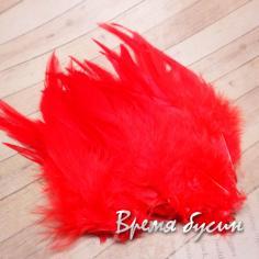 Перо петуха, цвет красный, длина 10-15 см (1 шт.)