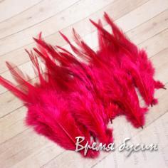 Перо петуха, цвет вишневый, длина 10-15 см (1 шт.)