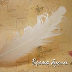 Перо гусиное кудрявое, длина 15-20 см, цвет белый (1 шт.)