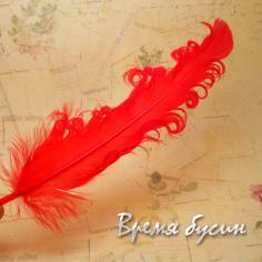 Перо гусиное кудрявое, длина 15-20 см, цвет красный (1 шт.)