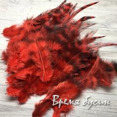 Перо петуха пестрое, цв.  красный, длина 10-15 см (1 шт.)